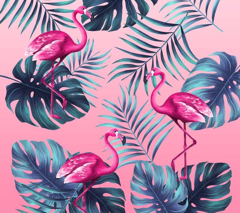Tropical-Spa